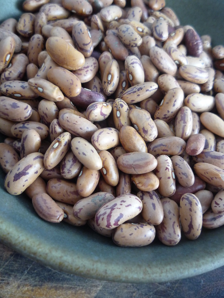Can You Blend Pinto Beans in a Blender