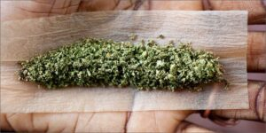 does grinding weed make it less potent, credit card grinders, grinder or hands, what is a weed grinder used for, grinding weed into powder, grinded weed, can you grind weed with a mortar and pestle, do you grind the whole bud,