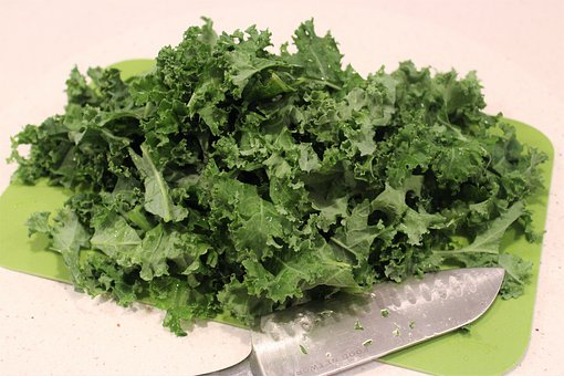 Can You Chop Kale in a Food Processor?